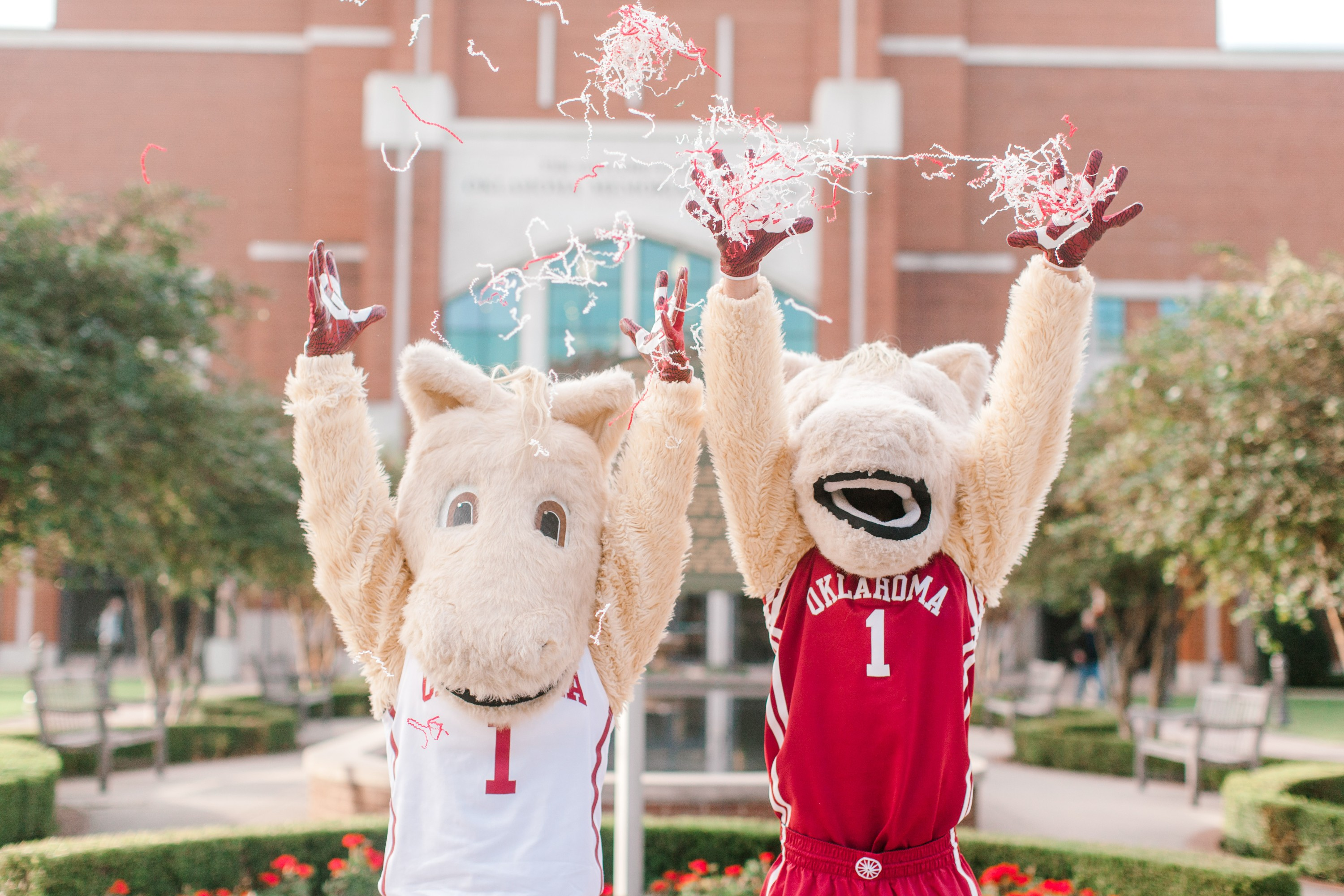 Boomer & Sooner with Admissions Box
