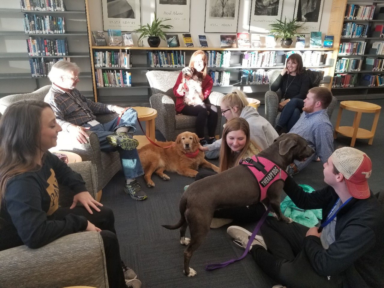 Three therapy dogs work provide stress release for a group of A&GS students in the National Weather Center Library.