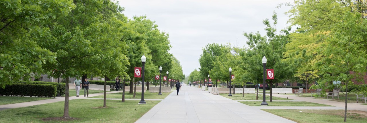 view down walkway with green trees and ou banners on lightposts