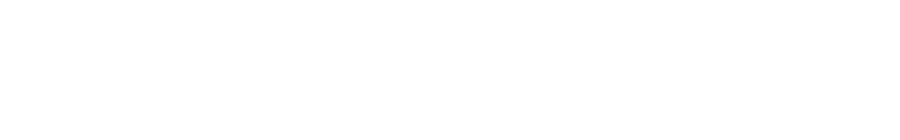 Center for Intelligence and National Security, The University of Oklahoma website wordmark