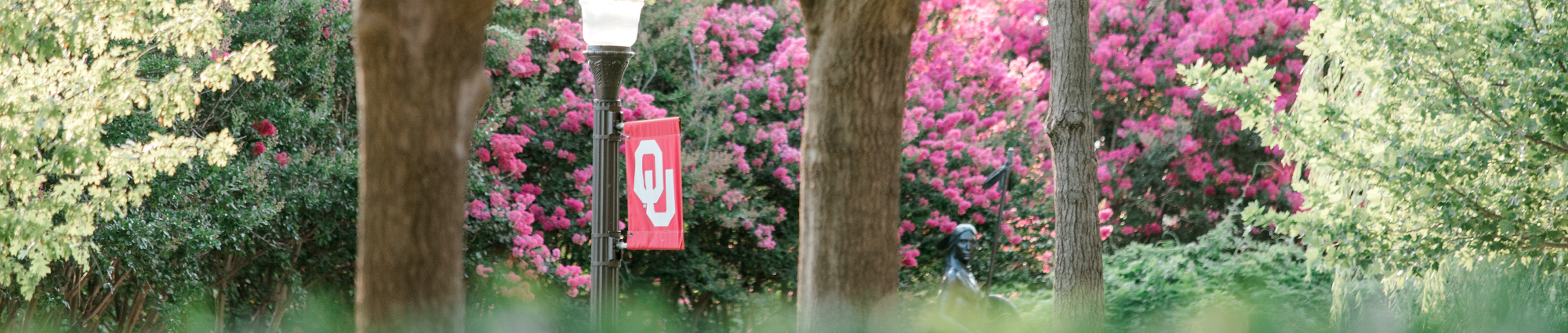 OU Flag on Campus