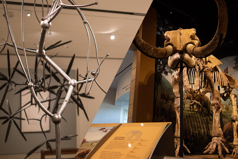 split image of exhibits at the Fred Jones (metal sculpture) and Sam Noble (mammoth skeleton) Museums