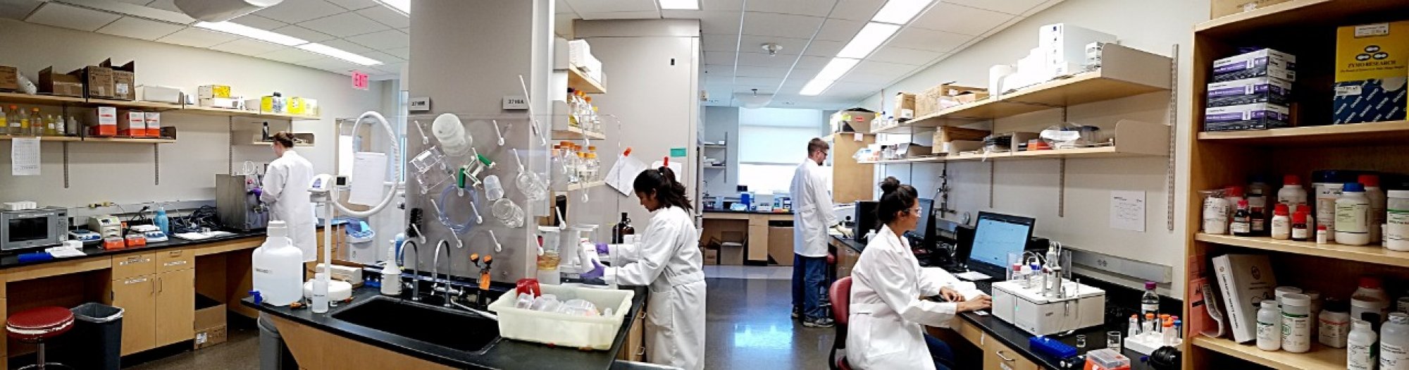 Scientists working in the PPC laboratory