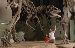 Dino and Family