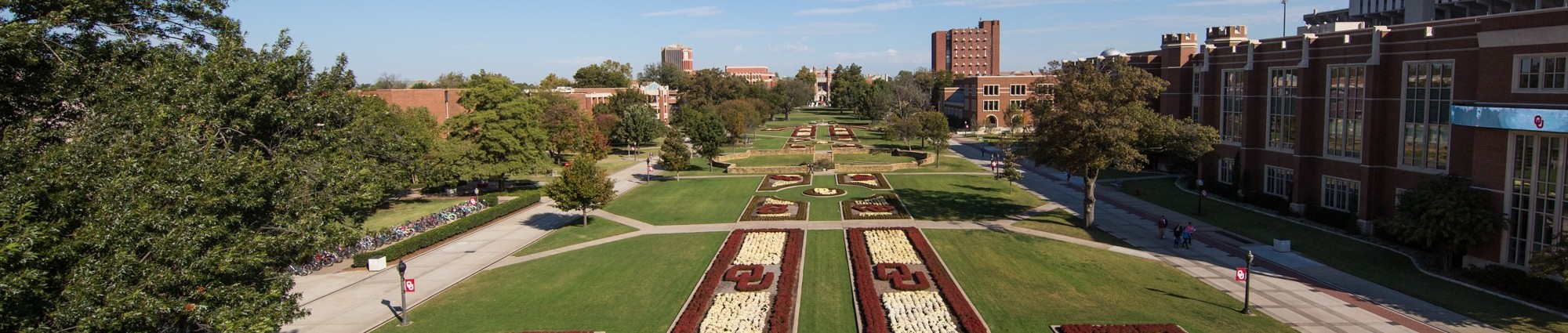 South Oval Looking Toward Bizzell