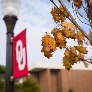 Autumn leaves at OU