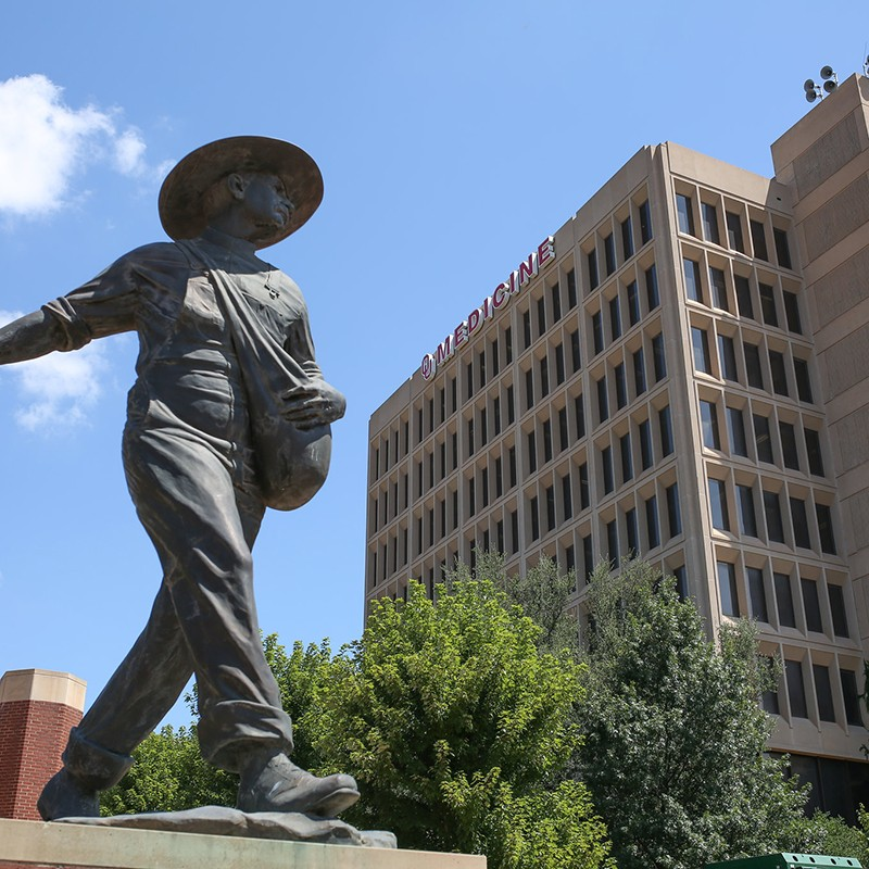 Decorative, Seed Sower statue on HSC campus